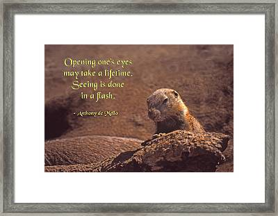 Opening One's Eyes Framed Print by Mike Flynn