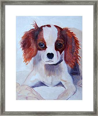 Opie As A Puppy Framed Print