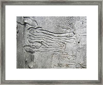 Optical Illusion_2a Framed Print by Halyna  Yarova