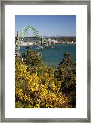 Or, Newport, Yaquina Bay Bridge Framed Print by Jamie and Judy Wild