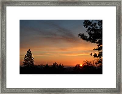 Orange-1 Framed Print