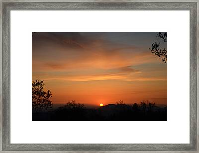 Orange-2 Framed Print