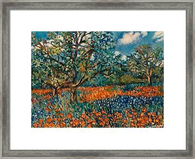 Orange And Blue Flower Field Framed Print