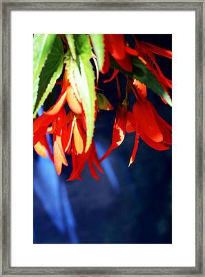 Orange And Blue Framed Print