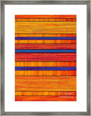 Orange And Blueberry Bars Framed Print by David K Small
