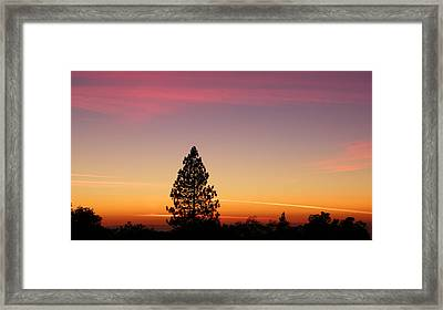 Orange And Pink Framed Print