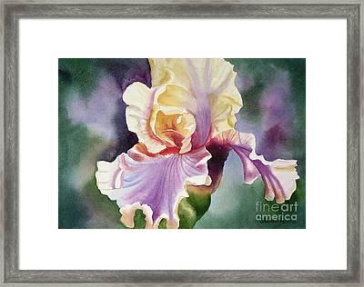 Orange And Purple Iris Framed Print