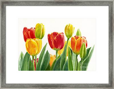 Orange And Yellow Tulips Horizontal Design Framed Print by Sharon Freeman
