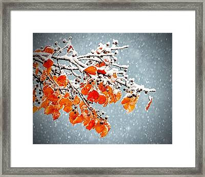 Framed Print featuring the photograph Orange Autumn Leaves In Snow by Tracie Kaska