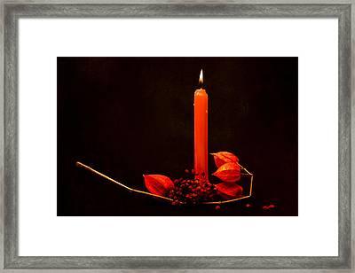 Orange Beauty Framed Print by Alexander Senin