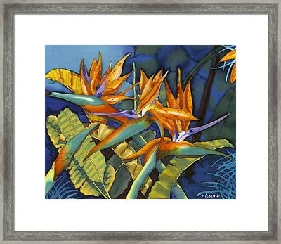 Orange Birds Framed Print