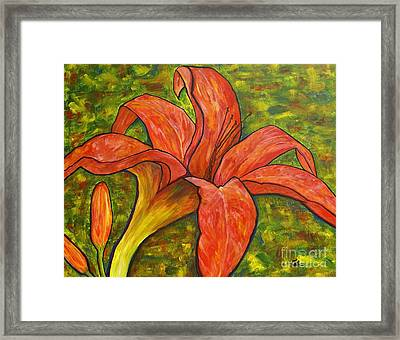 Summer Breeze Framed Print by Jane Chesnut
