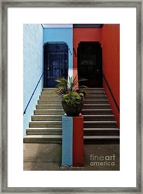 Framed Print featuring the photograph Orange - Blue With Plant Between by Sherry Davis