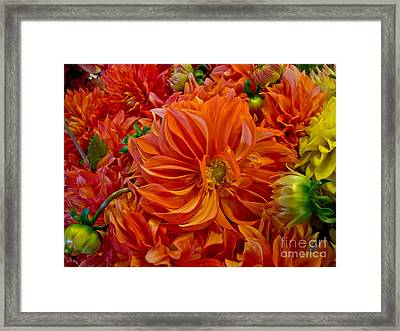 Orange Bouquet Framed Print by Arlene Carmel
