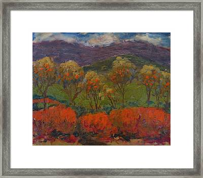 Orange Bushes Framed Print