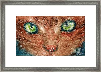 Orange Cat Framed Print
