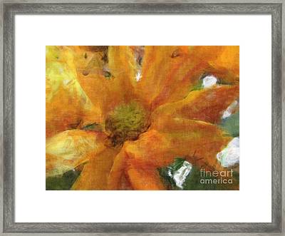 Orange Chrysanthemem Photoart Framed Print