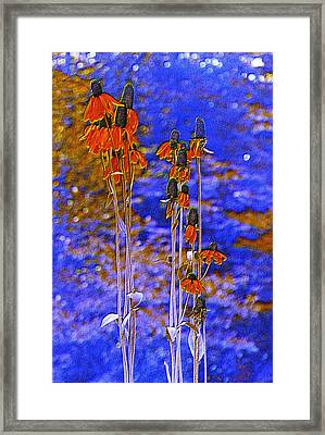 Orange Cones Framed Print by Jan Amiss Photography