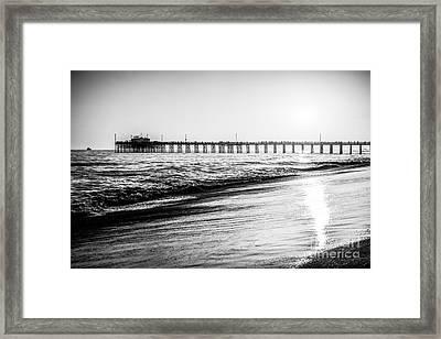 Orange County California Picture Of Balboa Pier  Framed Print