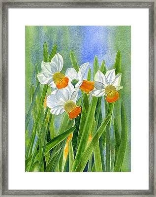 Orange Daffodils With Background Framed Print by Sharon Freeman