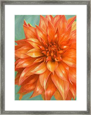 Framed Print featuring the digital art Orange Dahlia by Jane Schnetlage