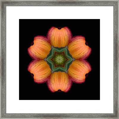 Framed Print featuring the photograph Orange Daylily Flower Mandala by David J Bookbinder