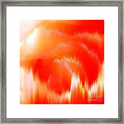 Orange Delight Framed Print