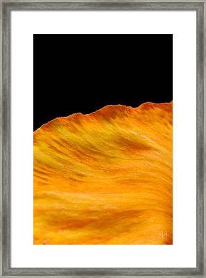 Orange Edge Framed Print by Geri Glavis