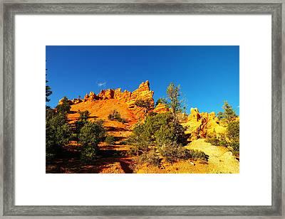Orange Foreground A Blue Blue Sky  Framed Print by Jeff Swan