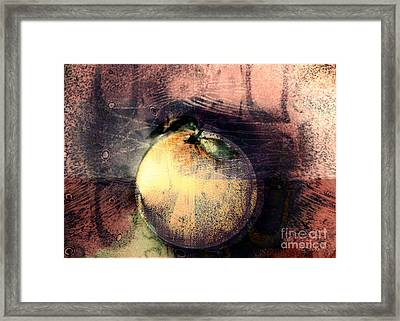 Orange Framed Print by Gabrielle Schertz