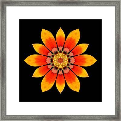 Orange Gazania I Flower Mandala Framed Print