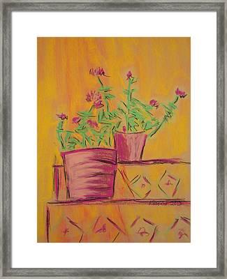 Orange Geraniums Framed Print by Marcia Meade