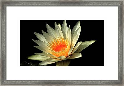 Orange Glow   # Framed Print by Rob Luzier