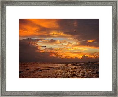 Orange Glow Framed Print by Rosie Brown