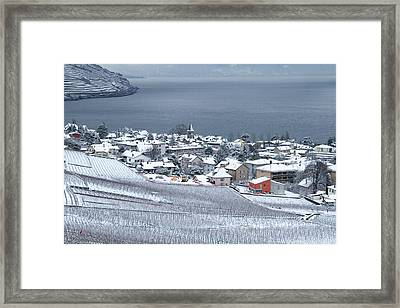 Framed Print featuring the photograph Orange House In The Vineyards by Colleen Williams