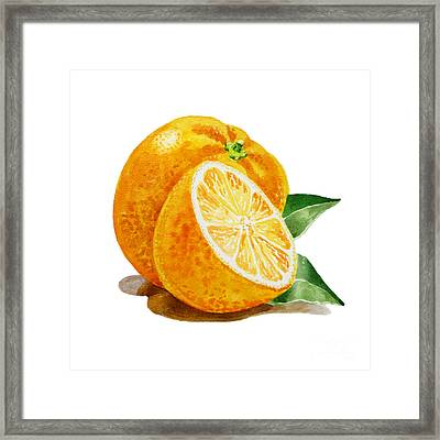 Artz Vitamins An Orange Framed Print by Irina Sztukowski