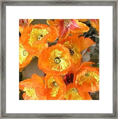 Orange Joy Framed Print