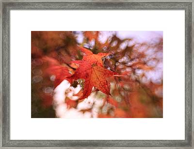 Orange Leaves Framed Print by Heather Green