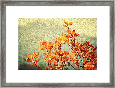 Orange Leaves Framed Print by Yew Kwang