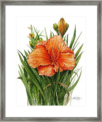 Framed Print featuring the painting Orange Lily by Bob  George