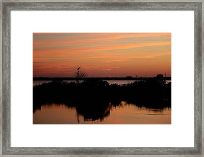 Orange Mist Framed Print