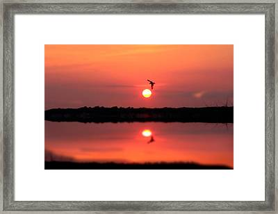 Orange Mood Framed Print