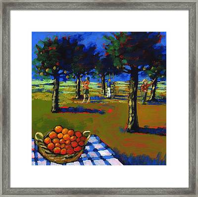 Orange Picking Framed Print by Paul Powis