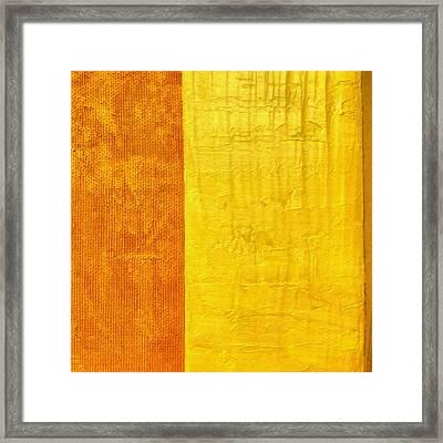 Orange Pineapple Framed Print