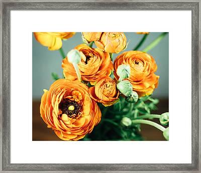 Orange Ranunculus Bouquet Framed Print by Nastasia Cook