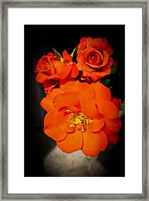 Framed Print featuring the photograph Orange Rose Trio by Joann Copeland-Paul
