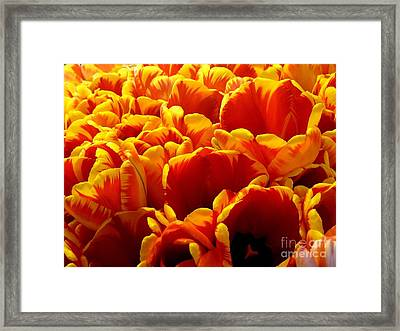 Orange Sea Framed Print by Lauren Leigh Hunter Fine Art Photography