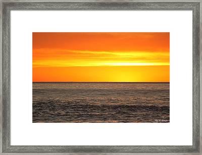 Orange Sherbet Framed Print by Amy Gallagher