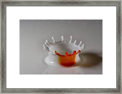 Orange Slice Framed Print by Mike Farslow