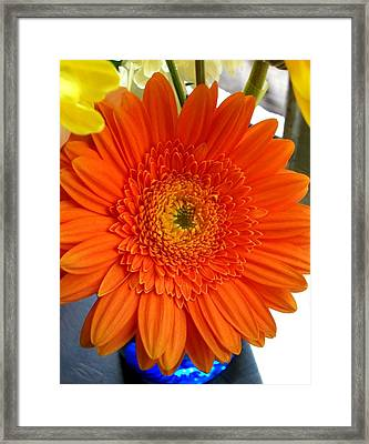 'orange Sun' Framed Print
